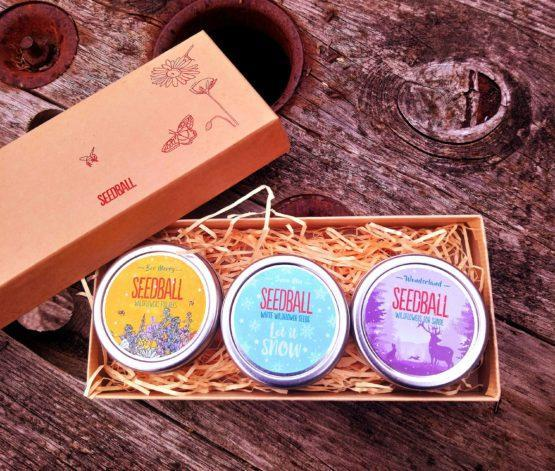 seedball limited edition xmas tins