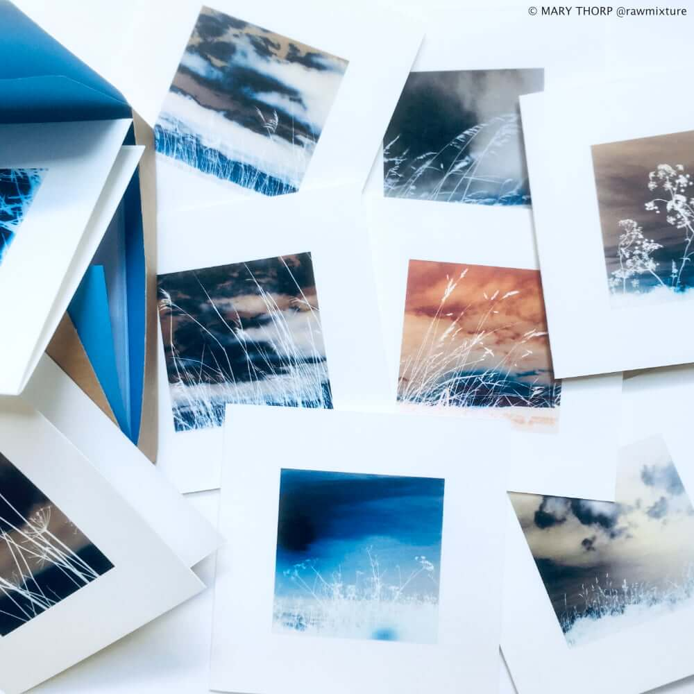 west wind cards group shot