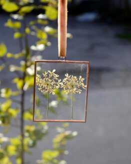 2 cow parsley head rectangle frame
