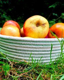 apples in rope table bowl