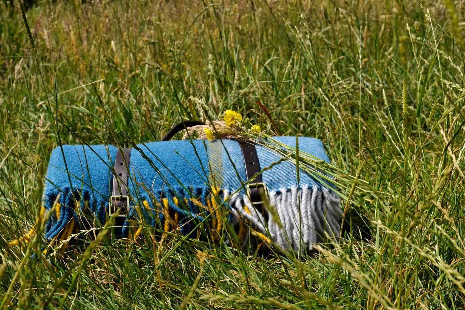 blue-yellow-picnic-rug