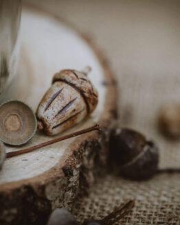 ceramic acorn close up