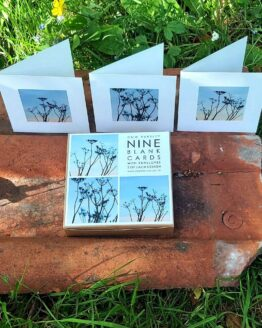 cow parsley cards garden shot