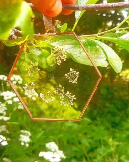 Paly Glass cow parsley hexagon copper