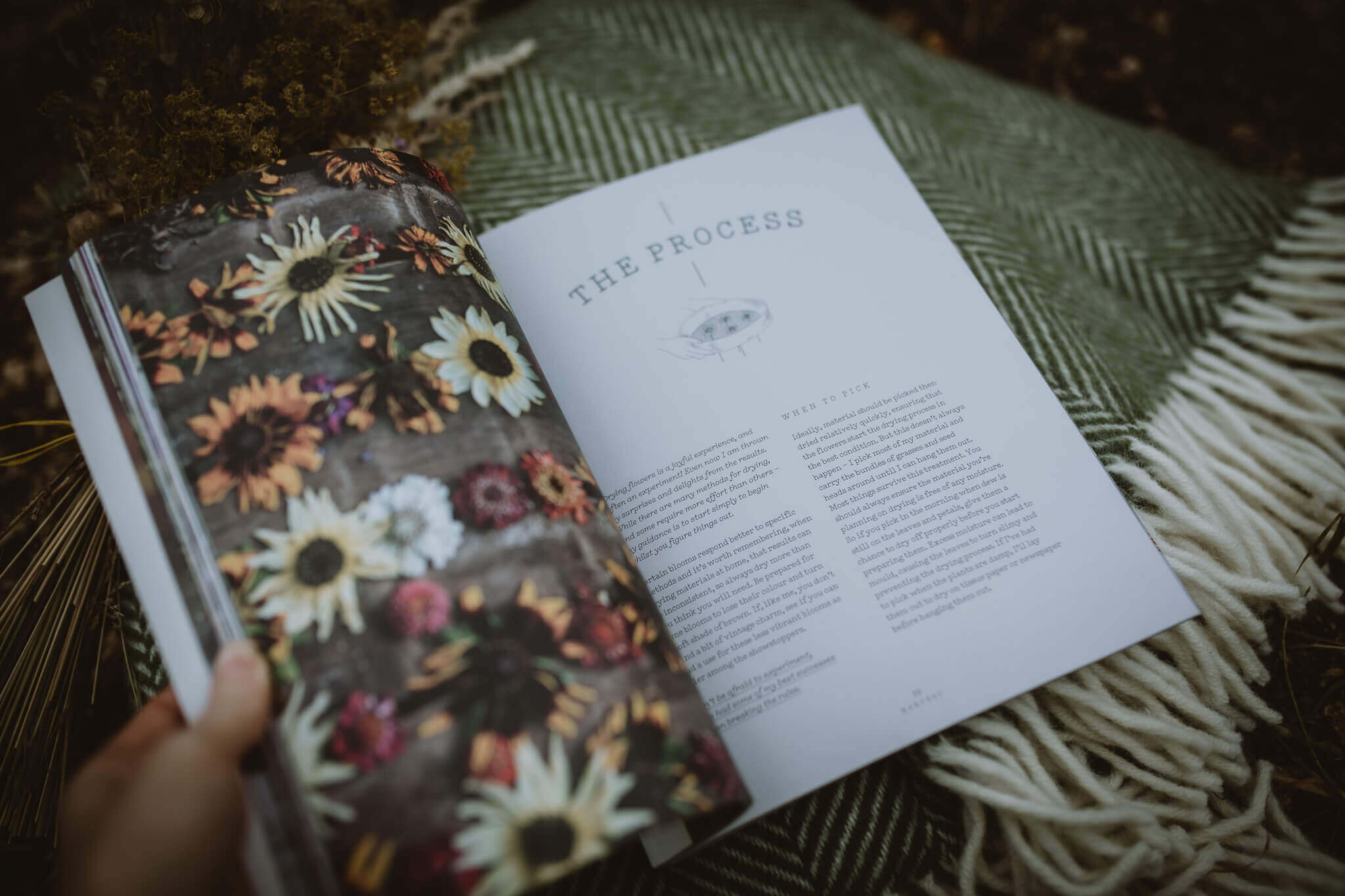 everlastngs book inside pages shot 3everlastngs book inside pages shot 3