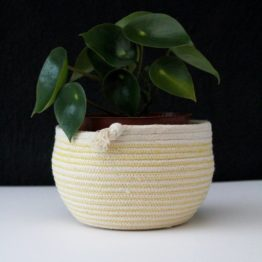 gorse yellow rope tumble pot