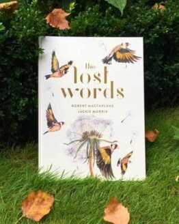 lost words book by robert macfarlane and jackie morris