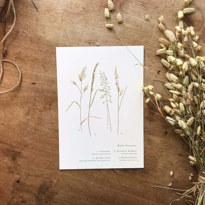meadow grasses print