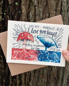 mushrooms seed card front