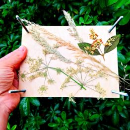 Pressed Grasses Workshop