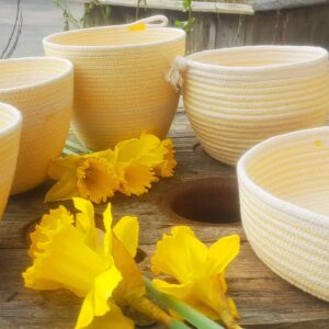ruby cubes gorse rope bowls