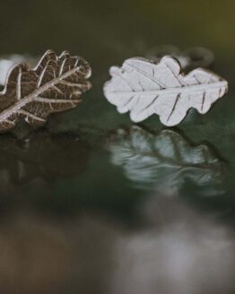 silver leaf stud earrings