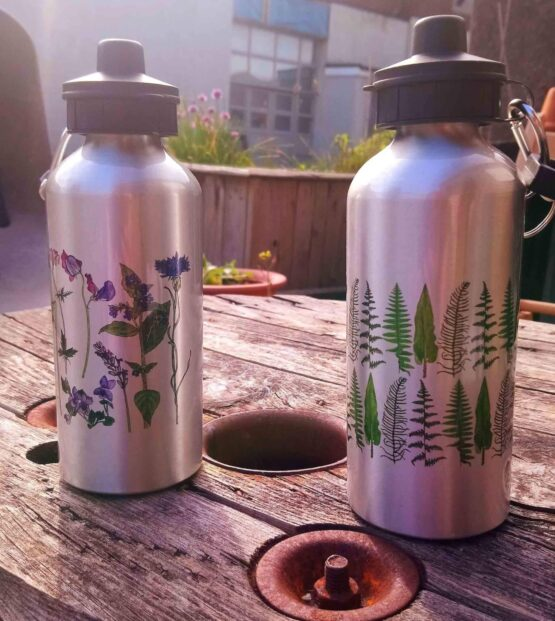 reusable illustrated water bottles