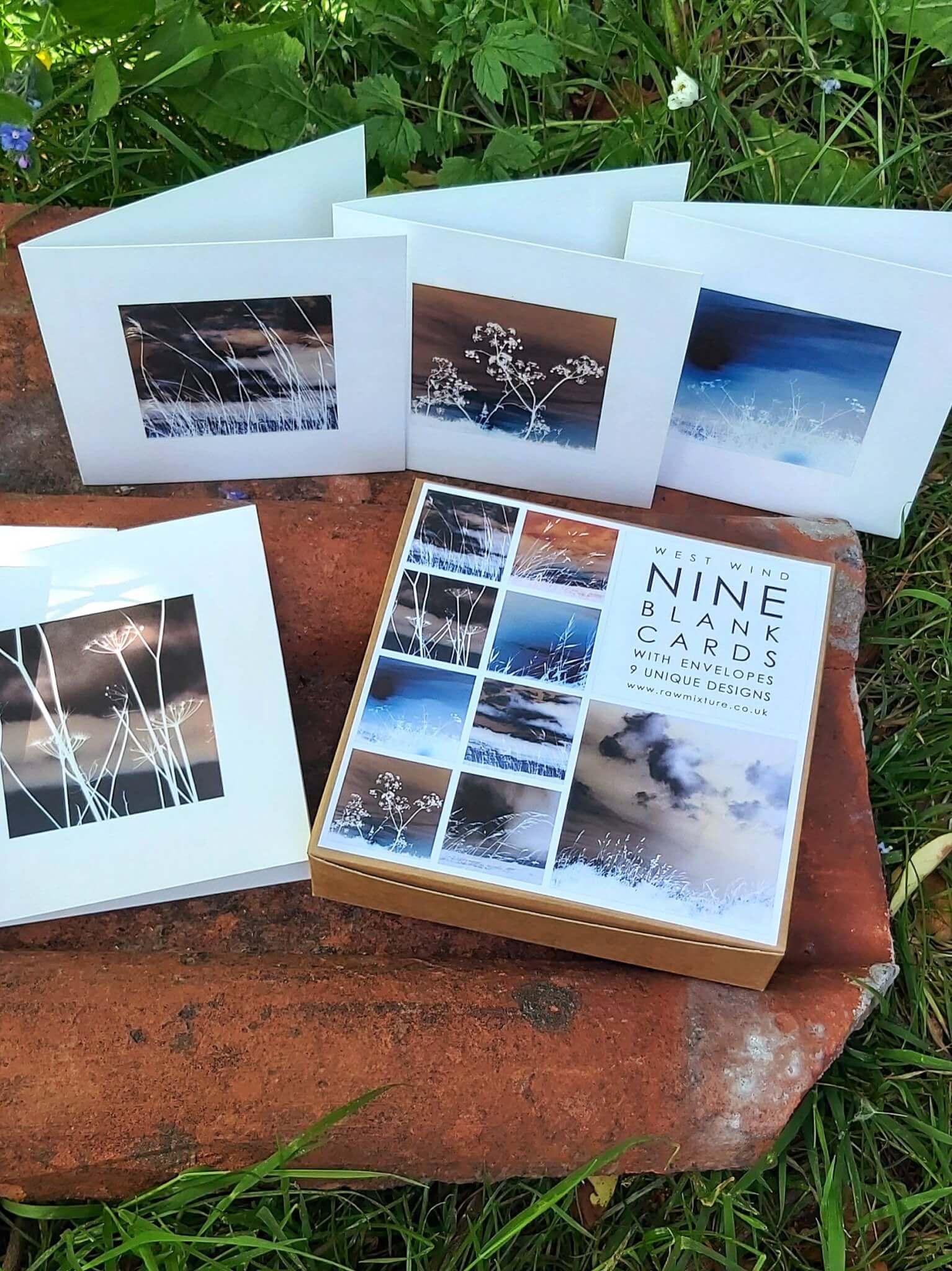 west wind cards garden shot