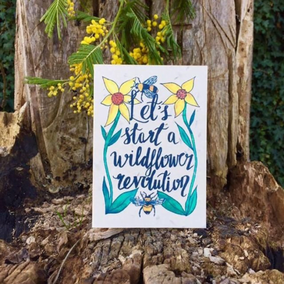 wildflower revolution card