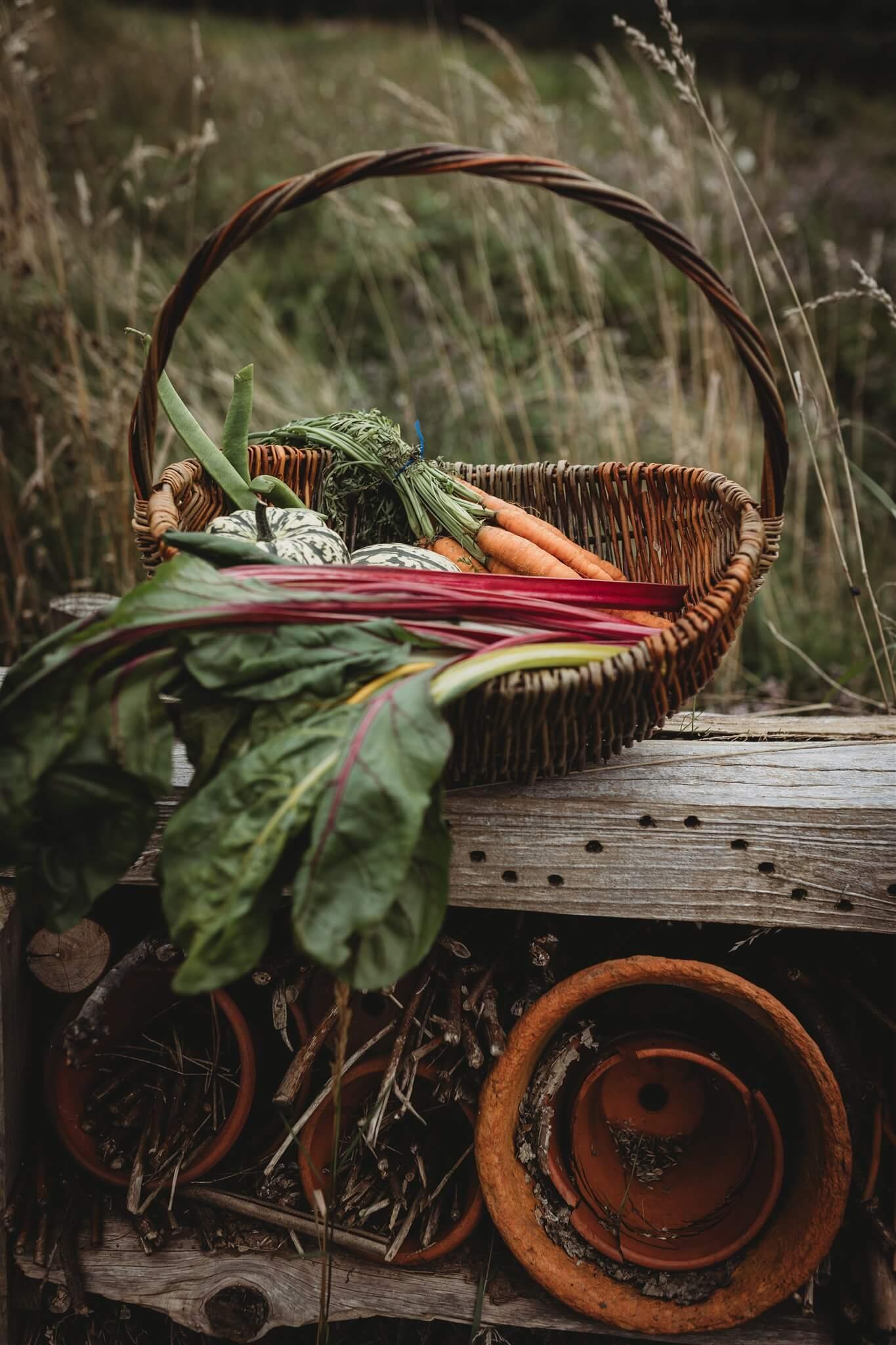 willow basket lifestyle